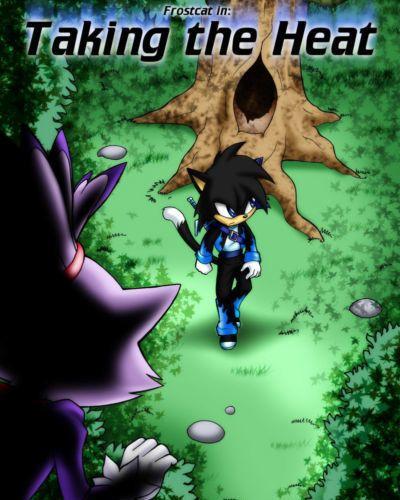 Palcomix Taking the Heat (Sonic the Hedgehog)