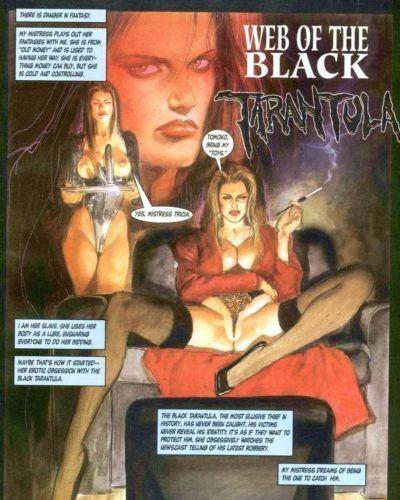 Mark Beachum Web of the Black Tarantula