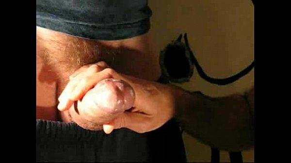 Smegma eating pig