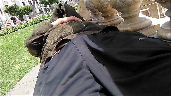 Piraña dormido en la plaza San martin de Lima 2 parte